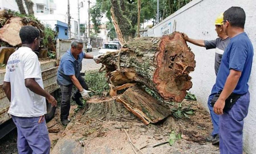Desde dezembro, fortes chuvas já provocaram transtornos em cinco cidades da região. Foto: André Henriques/DGABC