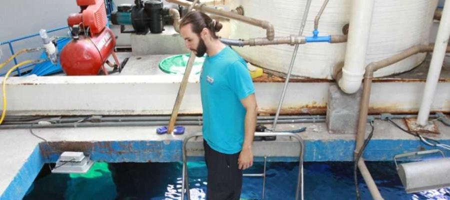Equipamento conta com três tanques de água salgada; além de peixes, há tubarão e pinguim. Foto: André Henriques/DGABC
