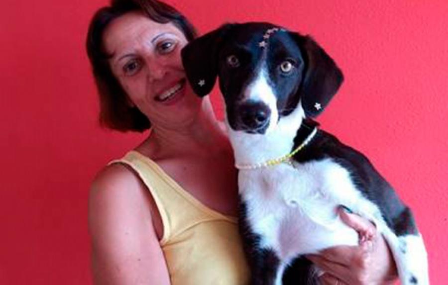 A cachorrinha Nina virou o xodó da família que já tem muitas histórias para contar. Crédito: divulgação-PMM