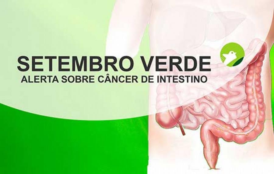 Setembro Verde: Diagnóstico precoce facilita cura